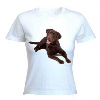 Chocolate Labrador Womens T-Shirt