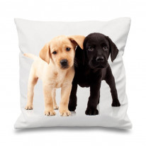 Labrador Pups Scatter Cushion