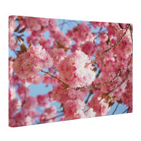 Pink Cherry Blossom Canvas Print Wall Art - Choice Of Sizes