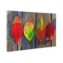 Autumn Leaves on Table Box Canvas Print Wall Art - Choice of Sizes