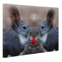 Squirells with Love Heart Box Canvas Print Wall Art - Choice of Sizes