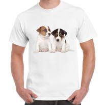 Jack Russell Puppies Mens T-Shirt