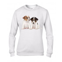 Jack Russell Puppies Women's Sweatshirt Jumper