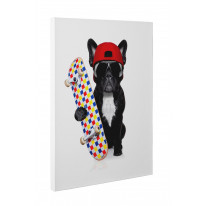 French Bulldog Skateboarder Canvas Print Wall Art - Choice Of Sizes