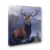 Monarch of the Glen Box Canvas Print Wall Art - Choice of Sizes