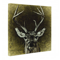Shabby Chic Stag Canvas Print Wall Art - Choice Of Sizes