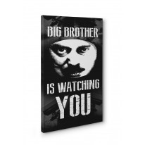 Big Brother Is Watching You Box Canvas Print Wall Art - Choice of Sizes