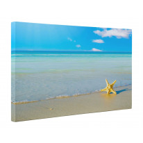 Starfish on Beach Box Canvas Print Wall Art - Choice of Sizes