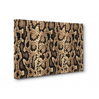 Snakeskin Box Canvas Print Wall Art - Choice of Sizes