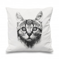 Hypnotized Kitten Cat 18 x 18 Inch Filled Sofa Throw Cushion