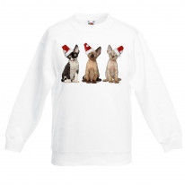 Three Kittens with Santa Claus Hats Christmas Kids Jumper \ Sweater