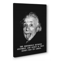 Albert Einstein Tongue Box Canvas Print Wall Art - Choice of Sizes