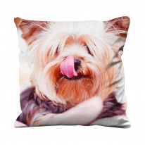 Yorkshire Terrier Dog With Tongue Out Faux Silk 45cm x 45cm Sofa Cushion