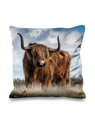 Highland Cattle Standing in Field Faux Silk 45cm x 45cm Sofa Cushion