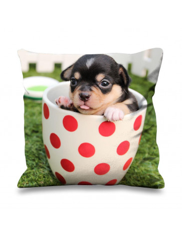 Chihuahua Puppy in a Tea Cup Faux Silk 45cm x 45cm Sofa Cushion