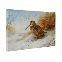 Archibald Thorburn Winter Woodcock Box Canvas Print Wall Art - Choice of Sizes