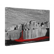 Tower of London Poppies Black and White Box Canvas Print Wall Art - Choice of Sizes
