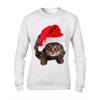 Christmas Cat In Santa Claus Hat Women's Jumper \ Sweater