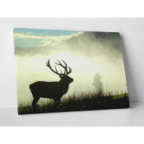 Stag Morning Mist Box Canvas Print Wall Art - Choice of Sizes