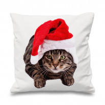 Christmas Cat Scatter Cushion