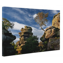 Brimham Rocks North Yorkshire Box Canvas Print Wall Art - Choice of Sizes
