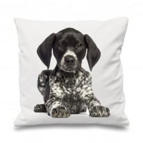 German Short Haired Pointer Cushion