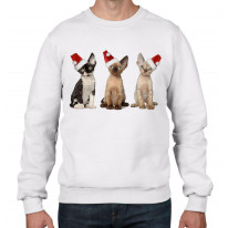 Three Kittens with Santa Claus Hats Christmas Men's Jumper \ Sweater