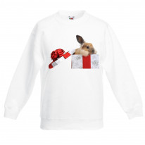 Rabbits In A Box Christmas Kids Jumper \ Sweater