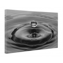 Drop of Water Black and White Box Canvas Print Wall Art - Choice of Sizes
