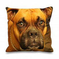 Boxer Dog Face Faux Silk 45cm x 45cm Sofa Cushion