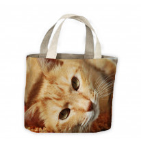 Ginger Cat Lying Down Tote Shopping Bag For Life