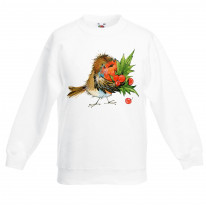 Christmas Robin with Holly Childrens Kids Sweatshirt Jumper