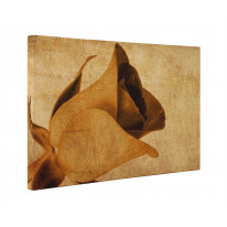 Grunge Rosebud Box Canvas Print Wall Art - Choice of Sizes