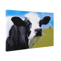Cow Face Close Up Box Canvas Print Wall Art - Choice of Sizes