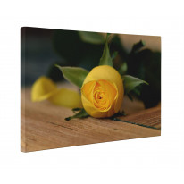 Yellow Rose on Table Box Canvas Print Wall Art - Choice of Sizes