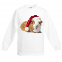 Pet Guinea Pig With Santa Claus Hat Christmas Kids Jumper \ Sweater