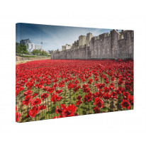 Tower of London Poppies Box Canvas Print Wall Art - Choice of Sizes