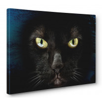 Black Cat Box Canvas Print Wall Art - Choice of Sizes