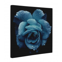 Blue Rose Wet Box Canvas Print Wall Art - Choice of Sizes