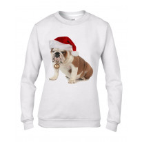 Bulldog With Santa Claus Hat Christmas Women's Jumper \ Sweater