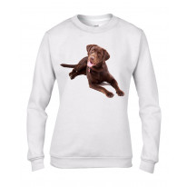 Chocolate Labrador Dog Women's Sweatshirt Jumper