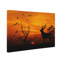 Stag Sunset Box Canvas Print Wall Art - Choice of Sizes