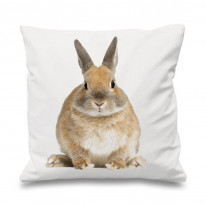 Bunny Rabbit Scatter Cushion