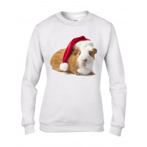 Pet Guinea Pig With Santa Claus Hat Christmas Women's Jumper \ Sweater
