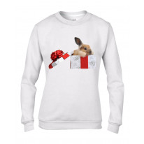 Rabbits In A Box Christmas Women's Jumper \ Sweater