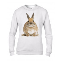 Bunny Rabbit Women's Sweatshirt Jumper