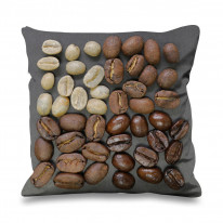 Coffee Beans Assorted Faux Silk 45cm x 45cm Sofa Cushion