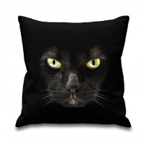 Black Cat Printed Scatter Cushion