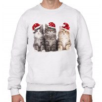 Three Christmas Kittens with Santa Hats Cute Mens Sweatshirt Jumper